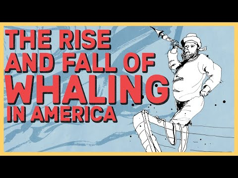 The Rise and Fall of American Whaling
