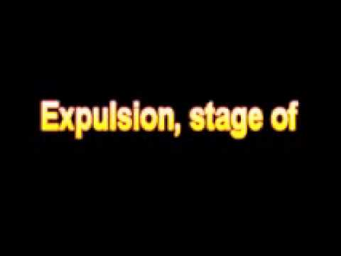 What Is The Definition Of Expulsion, Stage Of   Medical Dictionary Free  Online