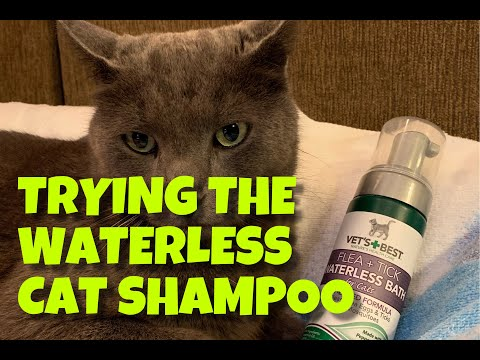 Washing the Cats with Vet's Best Flea and Tick Waterless Bath (Plant Based Formula)