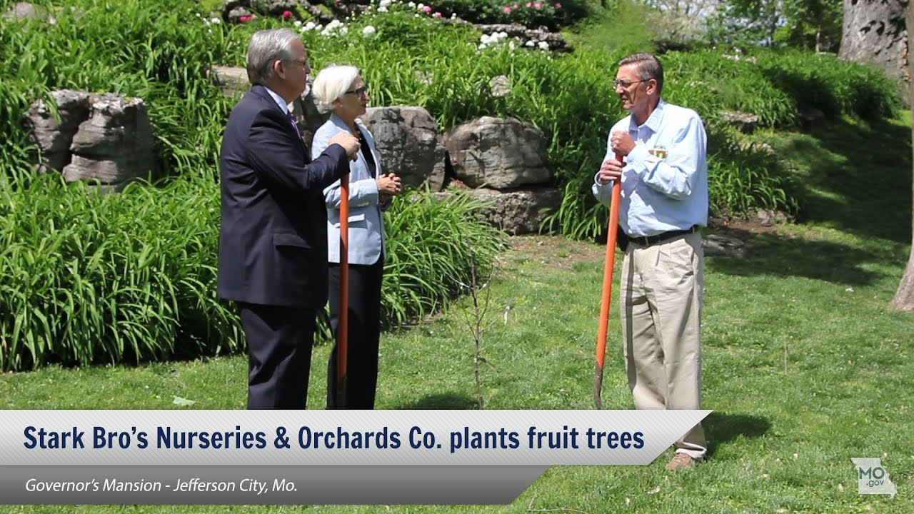 Stark Bro S Delivers Fruit Trees To Governor Mansion