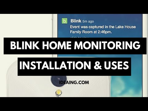 Blink Security Camera Daylight And Night Vision Footage
