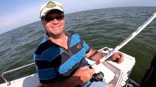 Где дельфины там ставрида Рыбалка на ставриду в Затоке Готовим малосольную ставридку в лодке