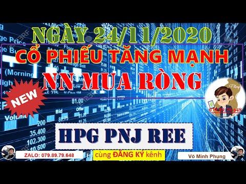 Chứng khoán hôm nay 23/11 | Nhận định thị trường chứng khoán | HPG PNJ REE Cổ Phiếu Tăng Mạnh