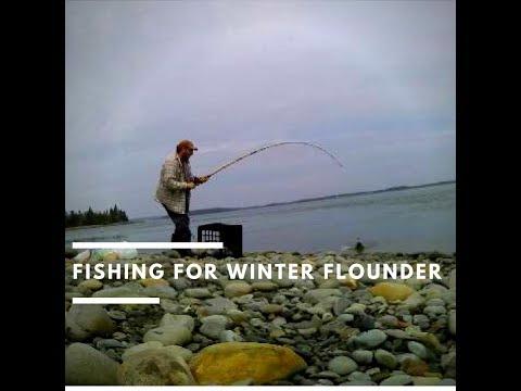 Winter Flounder 2018
