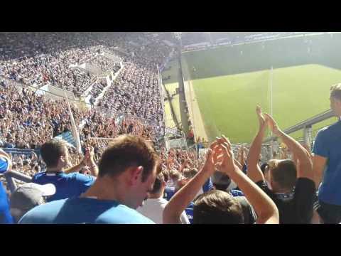 Schalke - Hoffenheim 25.09.2016