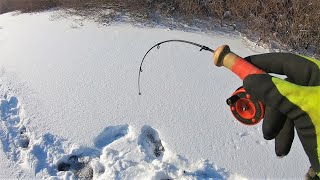 ПОСТАВИЛ 5 ЖЕРЛИЦ И ВЗЯЛ БАЛАНСИР В РУКИ Зимняя Рыбалка на реке после бурана