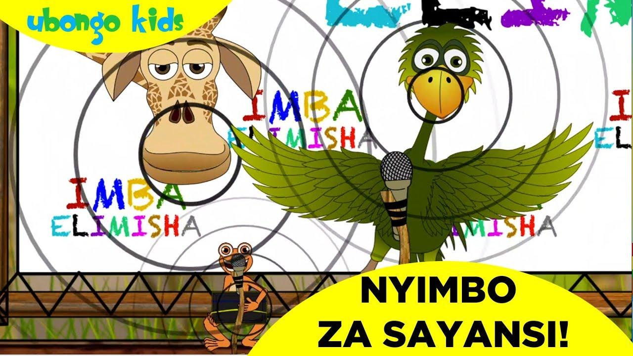 Download Imba Nyimbo za Sayansi na Mama Ndege! | Ubongo Kids | Katuni za Elimu kwa Kiswahili