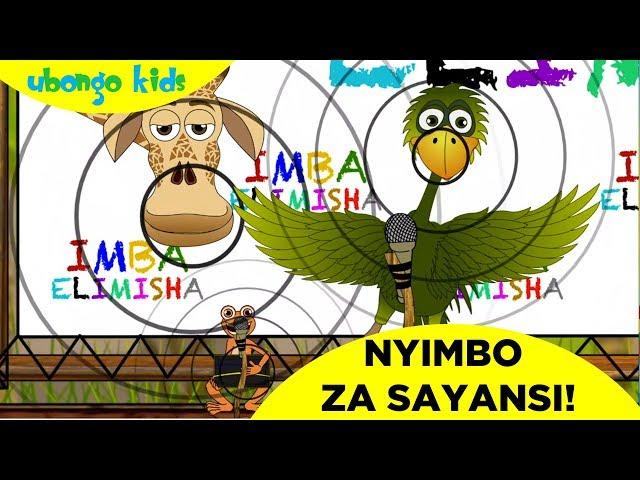Imba Nyimbo za Sayansi na Mama Ndege! | Ubongo Kids | Katuni za Elimu kwa Kiswahili