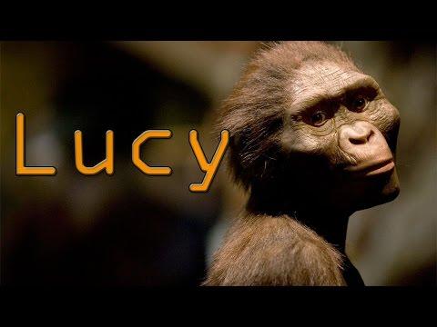 Lucy | En 1 minuto