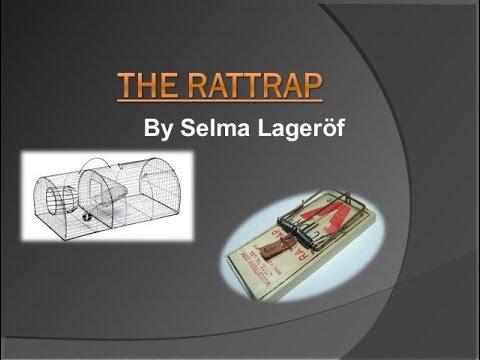selma summary
