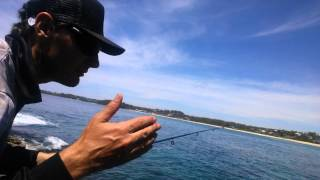 Catching Squid On The NSW South Coast.