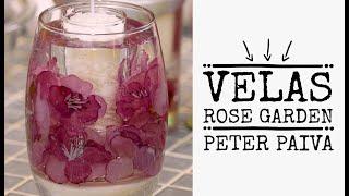 peter Paiva