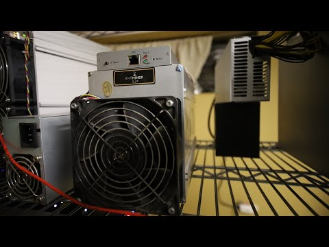 DOGECOIN U0026 Litecoin 1 Month PROFITS On A Bitmain Antminer L3+...