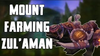 Solo Mount Farming Zul'Aman Walkthrough/Commentary