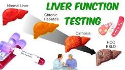 hqdefault - Tests For Kidney And Liver Function
