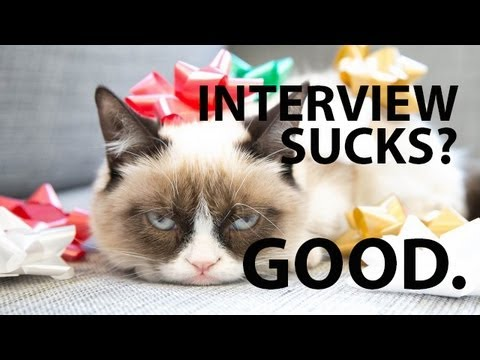 Youtube Grumpy Cat Interview