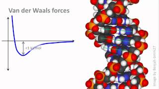 Biochemistry 2.3: Noncovalent interactions, pt 2