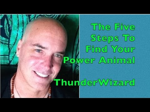 Five Steps to Find Your Power Animal - Spirit Animal -  Shamanism