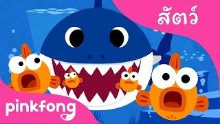 ลูกฉลาม   เพลงสัตว์   พิ้งฟอง(Pinkfong) เพลงและนิทาน