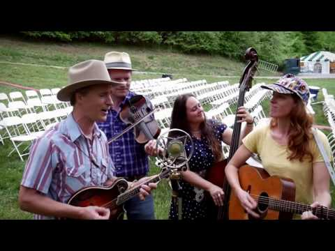 Foghorn Stringband - Let Me Fall (live with Ear Trumpet Labs)