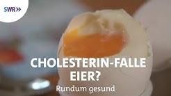 Zuviel Cholesterin durch Eier?   Rundum gesund