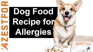 Homemade Dog Food - DIY Dog Food - How to improve your dogs health