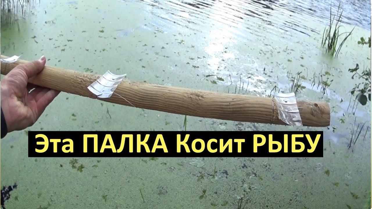 НЕТ УДОЧКИ? ЛОВИ НА ПАЛКУ.Рыболовный лайфхак.Убийца карася и карпа с палки.