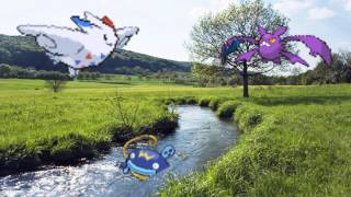 ¿Cómo debería ser la 7ª generación Pokémon? - Sistema de combate y nuevos tipos - Parte 2