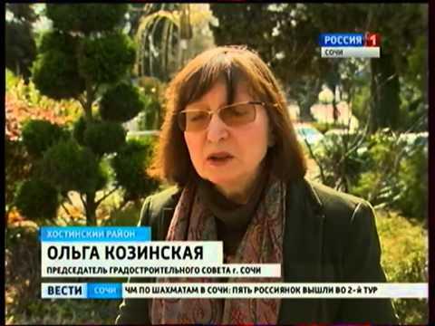 Судьба кедров сочинского санатория «Орджоникидзе» остается под вопросом
