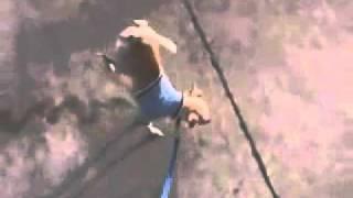 пособие для собак - как правильно метить территорию