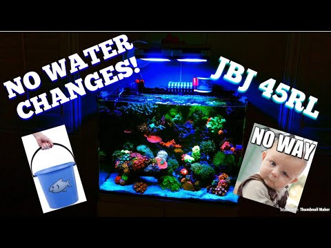NO WATER CHANGES EVER!!
