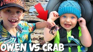 Kids Vs Pinching Crabs!!