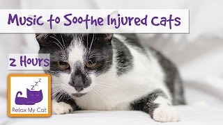 2 Hours of Soothing Music for Injured or Poorly Cats  Calm Down Your Cat with Music