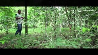 Onda Verde | Conhecimento e cuidado para preservar o meio ambiente