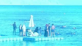 Egypt Sharm el Sheikh Red sea Hilton Sharks bay
