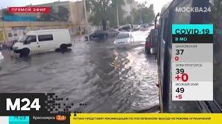Автомобилистов призвали парковаться вдали от деревьев из-за грозы и ветра - Москва 24