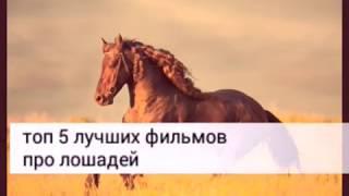 Лучшие фильмы про лошадей