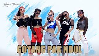 Rheyna Morena - Goyang Pak Ndul Mp3
