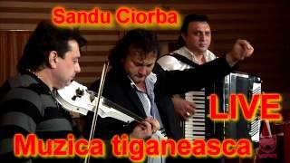 Sandu Ciorba - Muzica tiganeasca [LIVE]