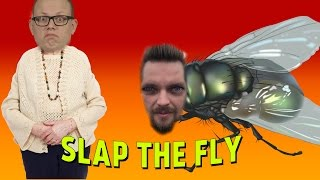 RÄTT I ANSIKTET | Slap the fly