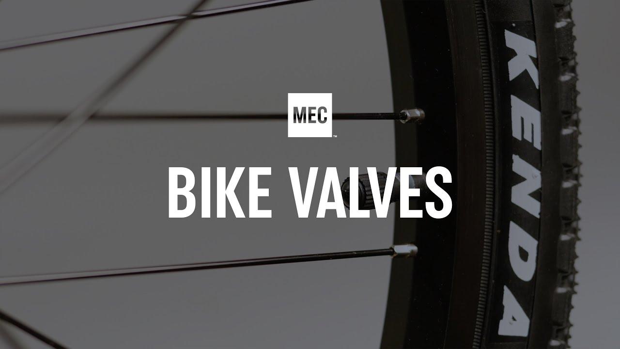 Types Of Bike Valves Youtube