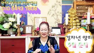 (평택 자비원 벼락대신)경자년 양띠 (30세 42세 54세 66세 78세)9월 운세 이야기 (음력)
