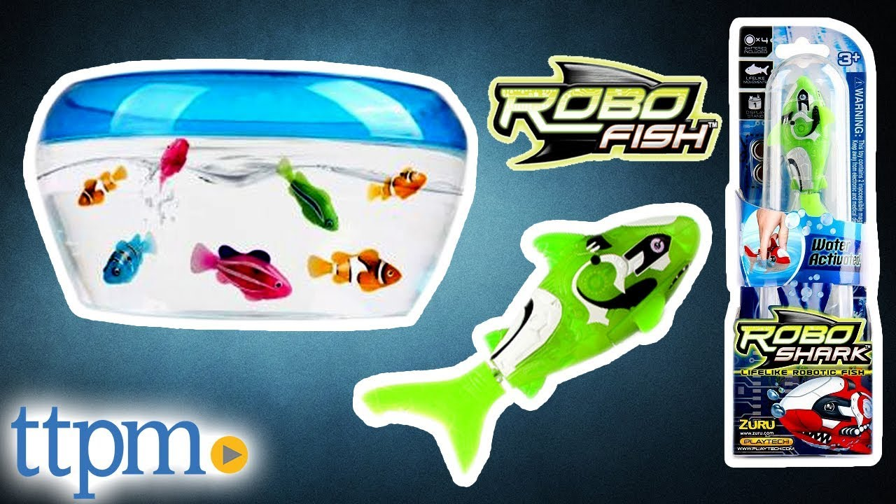Robo Fish From Zuru Youtube