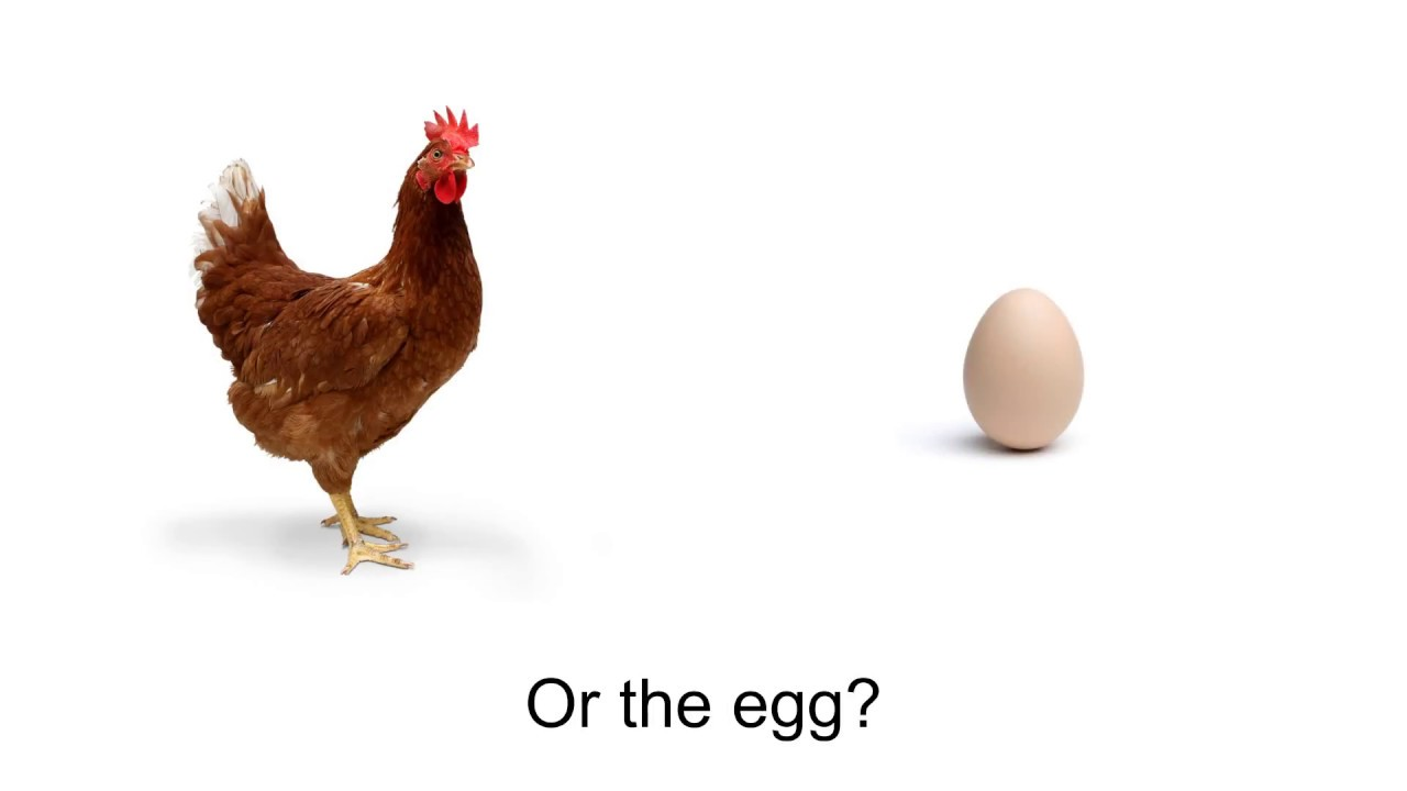 the difficulty of determining what was first and the chicken and egg dilemma In terms of the chicken and the egg dilemma, parent stress might reflect parent depression or anxiety, child be- havior and learning problems, and family dysfunction above.