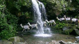 Mt. Le Conte Lodge Llama Train, Great Smoky Mountains