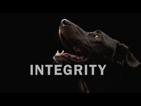 why-integrity-is-a-core-value-at-redbarn-pet-products