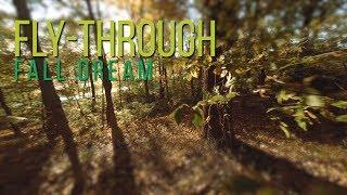 "Fly-Through ""Fall Dream"""