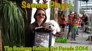Gaslamp Holiday Pet Parade 2014 SP #7
