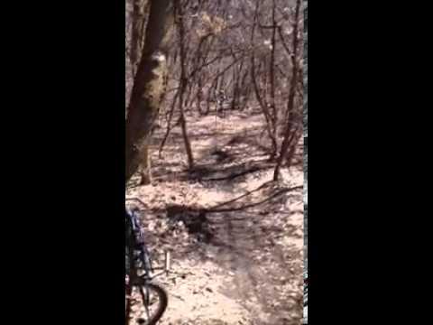 Mountain Biking (funny) East Mountain Wilderness P by Scott McCallum