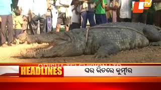 11 AM Headlines 01 Nov 2017 | Today News Headlines - OTV